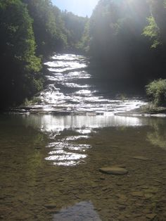 Buttermilk Falls. Ithaca, New York.