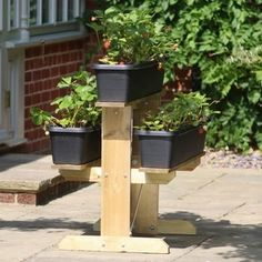 Strawberry Raised Growing Table - Garden Planters at Harrod Horticultural Wooden Garden Planters, Planter Table, Strawberry Patch, Raised Beds, Fruits And Vegetables, Container Gardening, Raising, Create Yourself, Herbs