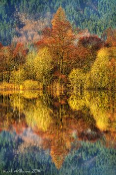 Autumn colors - 'Chon Colours' - Loch Chon, Trossachs, in Kinlochard, Scotland; photo by Shuggie! Beautiful World, Beautiful Places, Beautiful Pictures, Jardim Natural, Autumn Scenery, Autumn Trees, Autumn Fall, Belleza Natural, Belle Photo