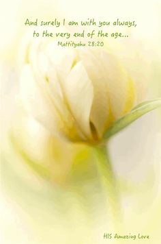 MATTHEW 28:20 -  teaching them to observe all things whatsoever I have commanded you;  and, lo, I am with you always,  even unto the end of the world.