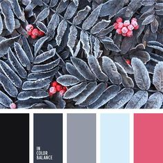 Contrasting combination of bright pink with pale blue and black complemented shades of gray. This color scheme can be used in a festive and everyday wardrobe, both male and female.