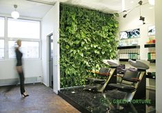 Green Fortune Plantwall / vertical garden in retail space. Beauty salon.