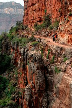 *ARIZONA ~ North Kaibab Trail, Grand Canyon - Rim to Rim Article (good tips & time estimates) Arches Nationalpark, Yellowstone Nationalpark, Grand Canyon Hiking, Trip To Grand Canyon, Grand Canyon South Rim, North Cascades, Trekking, Places To See, Places To Travel