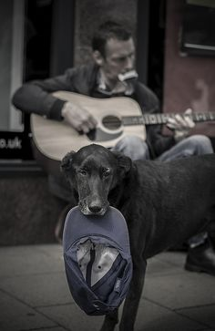 Busker and his dog by afcteabag, via Flickr