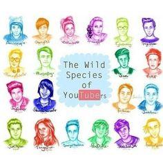 YouTubers ♡♥♡