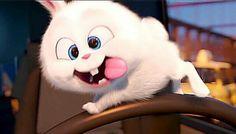 "The Secret Life of Pets : meet ""Psycho Bunny"" ! Cartoon Profile Pics, Cartoon Pics, Cute Disney Wallpaper, Cute Cartoon Wallpapers, Animated Rabbit, Snowball Rabbit, Foto Cartoon, Gif Lindos, Cute Bunny Cartoon"