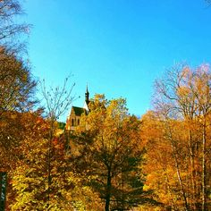 Goldener Herbst in der Region #Murau-Kreischberg Berg, Cabin, House Styles, Home Decor, Tourism, Fall, Vacations, Cabins, Cottage