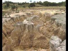 Environmental Issues | Soil Salinity in Australia | 6 min