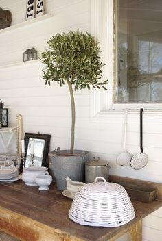 Paint a basket white, attach a handle and use it on outdoor dishes to keep the bugs off.