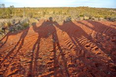 Into the Outback at Uluru, Australia Ayers Rock Australia, Vacation Trips, Vacations, Australia Travel, Where To Go, Us Travel, Places To See, New Zealand, Travel Inspiration