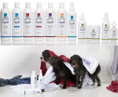 Ragazzi Life is a new brand of dog shampoos, dog conditioners, and grooming products. Pet Dogs, Pets, Doggies, Dog Milk, Pet Shampoo, Pet Supply Stores, Pet Grooming, Cat Design, Training Your Dog