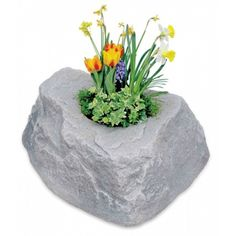 Sweet!  An artificial rock planter.  Gotta get me a couple for my patio.