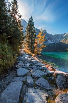 Stone path to Morskie Oko Lake, Tatra Mountains / Poland