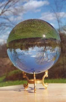 woods through crystal ball