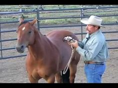 Horse trainer Pat Parelli explains why respecting your horse's personal space is important when approaching him in his corral.
