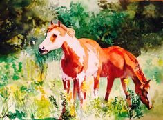 This is a watercolour painting I did of my cousin's horses. I still need to learn more about background trees etc