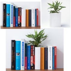 """A book shaped flower pot. The title of the book is """"THE LIFE OF PLANTS""""."""
