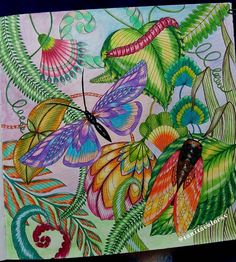 M.M. Tropical Wonderland