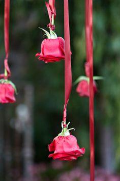 Bellissima idea per gli addobbi di un #matrimonio a #tema di amore / rosso. Gorgeous idea for reception decoration, rose buds hung on red ribbon