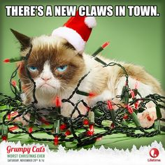 The Official Grumpy Cat™ Tumblr - from 2014 - #GrumpyCat
