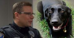 Cop Saves a Woman's Life After Choosing to Understand a Dog INSTEAD of SHOOTING it!!! OMG tissues & goose bumps! THIS man is a HERO!!!!!