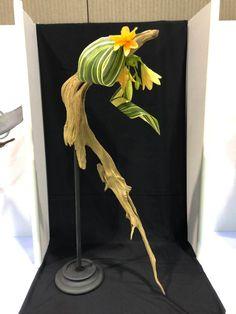 The Ohio Association of Garden Clubs Contemporary Flower Arrangements, Creative Flower Arrangements, Ikebana Arrangements, Wedding Flower Arrangements, Floral Arrangements, Purple Wedding Flowers, Flower Bouquet Wedding, Flower Bouquets, Lace Flowers