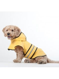 Fashion Pet Dog Raincoat For Small Dogs Dog Rain Jacket With Hood Dog Rain Poncho Polyester Water Proof Yellow W Grey Reflective Stripe Perfect Rain Gear For Your Pet By Ethical Pet - Pro Dog Supplies Pet Fashion, Animal Fashion, Ethical Fashion, Fashion Clothes, Large Dogs, Small Dogs, Small Animals, Rain Slicker, Dog Raincoat