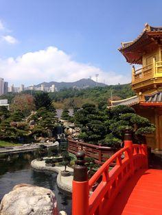 #HongKong #Gold #Temple #travel #wanderlust Hong Kong, Travel Inspiration, Temple, Wanderlust, Gold, Temples