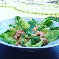 Salat med nye kartofler, fjordrejer og rygeostcreme