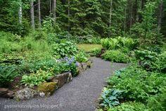 Mökkipuutarhassa: kesäkuuta 2015 Garden, Plants, Garten, Gardening, Plant, Outdoor, Gardens, Yard, Planting
