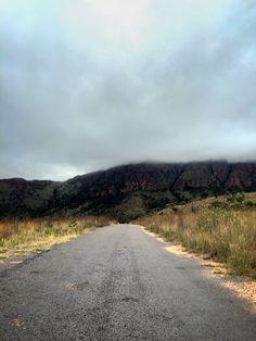 Marakele National Park, Limpopo.
