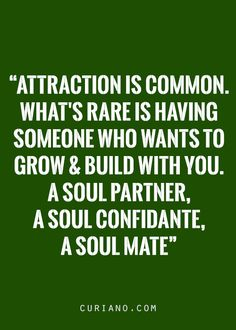 Common attraction is common..NOTHINGS common in Nikki n Terry connection..everythings..calm n smooth or intense..except attraction,thats extreme