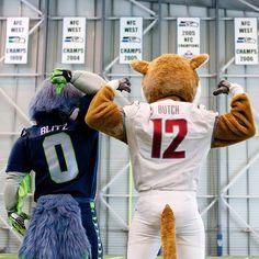 Butch & Blitz, Cougars & Seahawks
