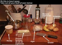 DIY - guide to grow orchids from seeds    I have some orchid seeds and they are like dust, so I looked up how to grow them and it is NOT simple.  Whew, wish me luck on this crazy science project!