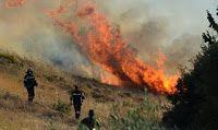 nemeapress: Υπό μερικό έλεγχο η πυρκαγιά στη Νεμέα
