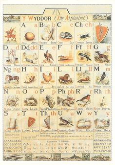The Welsh Alphabet poster based on the alphabet of T. Evans of Llangynwyd and illustrated by his son, Christopher Evans. It was used in Glamorgan schools in the early twentieth century. In the National Museum Wales. Welsh Symbols, Celtic Symbols, Mayan Symbols, Egyptian Symbols, Ancient Symbols, Welsh Alphabet, Celtic Alphabet, Alphabet Soup, Alphabet Letters