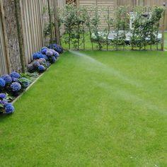 Tuin beregening - aangelegd door TuinKeur Hovenier :Hoveniers van Frankenhuyzen Golf Courses, Water, Lawn, Gripe Water