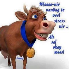 created with InstaSquarer for iPhone Lekker Dag, Afrikaanse Quotes, Goeie More, Special Quotes, Morning Pictures, Good Morning Wishes, Funny Cards, Animal Quotes, Iphone