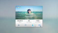 Twitter Interface - 365psd