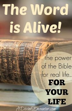A personal look at the power of the Bible, examining its authority as the very best text when taught by the very best Teacher, the Holy Spirit. (Hebrews 4:12) http://adivineencounter.com/the-word-is-alive