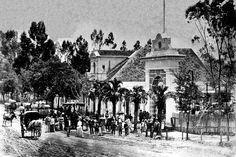 A família imperial pelas fábricas de erva mate de Curitiba. A Mansão das Rosas, em 1880, propriedade do industrial do mate Francisco Fasce Fontana. Na foto, não está a Princesa Isabel. (Foto: Acervo Casa da Memória)