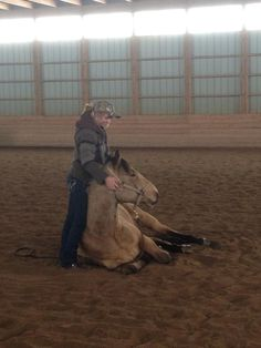 Amber Marshall (Amy Fleming) with Ty and Caleb 's horse Cash. Watch Heartland, Heartland Quotes, Heartland Ranch, Heartland Tv Show, Heartland Seasons, Amber Marshall, Horses And Dogs, Show Horses, Trick Riding