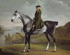 Paintings Reproductions Stubbs  George Joseph Smyth Esq, Lieutenant of Whittlebury Forest, Northamptonshire, on a dapple grey horse (1762-1764)