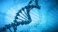 Researchers discover DNA 'repair' enzyme that could enhance cancer treatments  Read more: http://www.foxnews.com/health/2013/07/30/researchers-discover-dna-repair-enzyme-that-could-enhance-cancer-treatments/?intcmp=obnetwork#ixzz2acrPHpqh