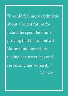 E.B. White quotation