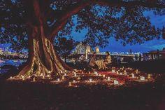 Proposals, Love Story, Dolores Park, Bride, How To Plan, Travel, Wedding Bride, Viajes, Bridal