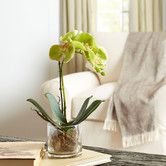 Found it at Birch Lane - Faux Orchid in Glass Vase, Green