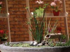 Decoración | Luz en casa | Mini estanque | Utilisima.com