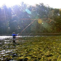 Already September!! Focus on the loop and lets catch some nice autumn rainows! #aosfishing #flyfishingmakesyouhappy #flyfishing #fliegenfischen #pescamosca #fluefiske #graz #styria #steiermark #austria #onlineshop #picoftheday #photooftheday #lovefishing #catchoftheday #catchandrelease #onthefly #rainbowtrout #autumnfishing #aosblog #speycasting #fishingdestinations #flyfishingtravel #looparmy