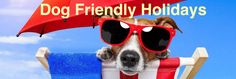 Take your whole family (along with pets) on holiday!! Fileybeach provide dog friendly holidays for better convenience for you and your family. Don't miss out all the fun contact today. Visit: http://www.fileybeach.co.uk/